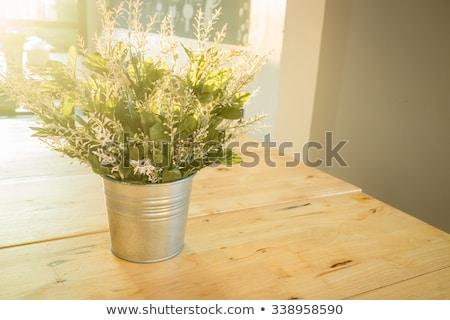 Simplesmente planta balde decorado mesa de madeira estoque Foto stock © nalinratphi