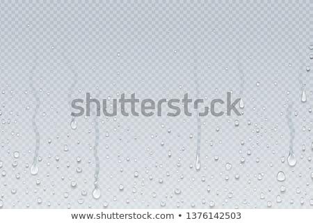 Bebida fría cubo de hielo caer vidrio agua Foto stock © alex_l