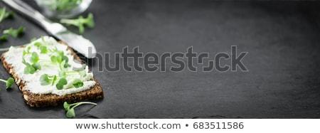 Ekmek süzme peynir tam buğday ekmeği peynir taze Stok fotoğraf © Digifoodstock