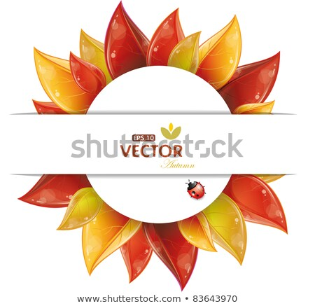 sunflower with autumn leaves eps 10 stock photo © beholdereye