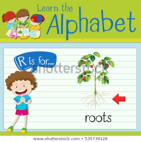 Flashcard letter R is for roots Stock photo © bluering