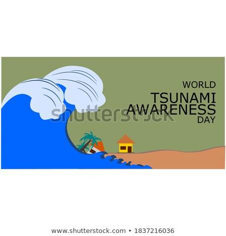 Tsunami sahne büyük dalgalar ev örnek Stok fotoğraf © bluering