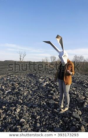 gentleman · konijn · masker · witte · meetkundig · ontspannen - stockfoto © dawesign