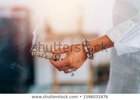 мудрец лист фон чай Purple цвести Сток-фото © LianeM