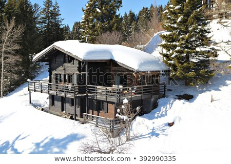Traditional wooden houses on a hill slope in Alps mountains, Hal Stock photo © Xantana