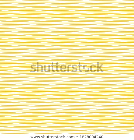 pack of mixed line and halftone pattern background Stock photo © SArts