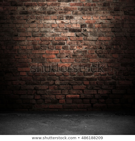 firka · terv · ikonok · felirat · sötét · téglafal - stock fotó © tashatuvango