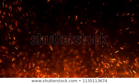 closeup fire heat stock photo © romvo