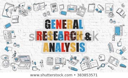 Algemeen onderzoek analyse doodle ontwerp Stockfoto © tashatuvango