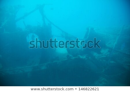 undersea ruins stock photo © aliencat