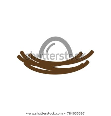 卵 巣 ベクトル ロゴ アイコン にログイン ストックフォト © blaskorizov