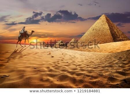 ラクダ 砂漠 エジプト 砂の 山 日没 ストックフォト © Givaga