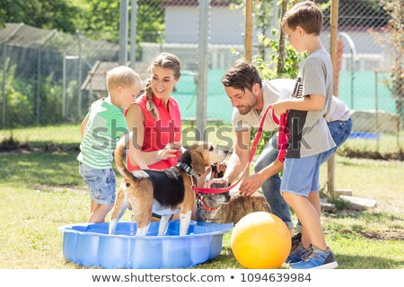 Family washing dog in pool of animal shelter taking care Stock photo © Kzenon