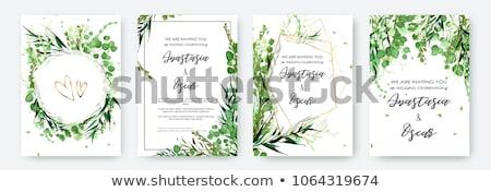 Schönen grüne Blätter Hochzeitseinladung Hochzeit Natur Stock foto © SArts