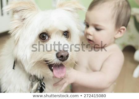 Denk mijn bal maanden oude baby Stockfoto © Lopolo