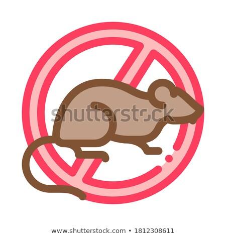Signo rata icono vector ilustración Foto stock © pikepicture