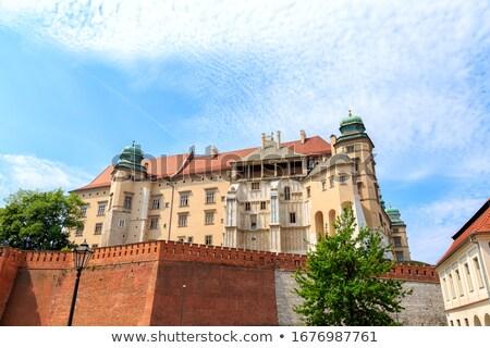 Wieża Polska zamek ściany krajobraz Zdjęcia stock © borisb17