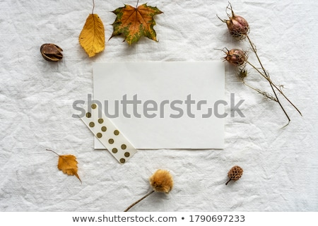Autumn sheet Stock photo © RuslanOmega