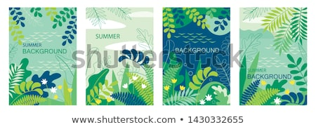 Abstract fern background. Stock photo © 72soul