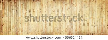 стены береза текстуры древесины аннотация Сток-фото © Taigi