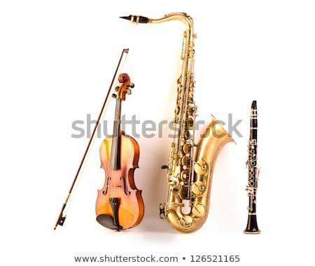 Sax tenor saxophone violin and clarinet in white Stock photo © lunamarina