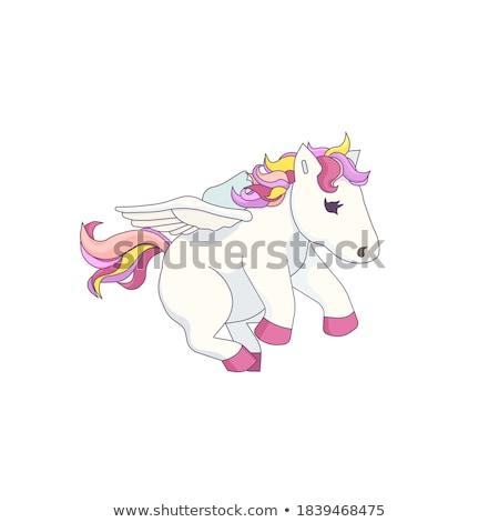 pegasus stock photo © genestro