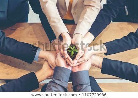 Growing Business Partnership Stock photo © Lightsource