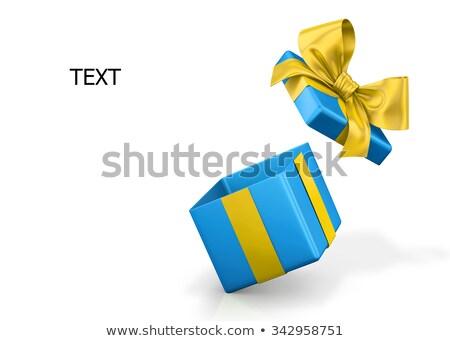 Open · schoen · vak · lege · karton · witte - stockfoto © shutswis