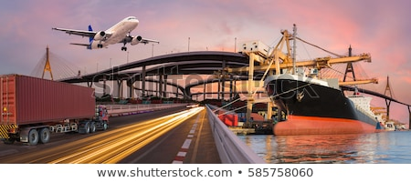 Vervoer luchtvaart vliegtuigen silhouetten collectie vector Stockfoto © vadimmmus