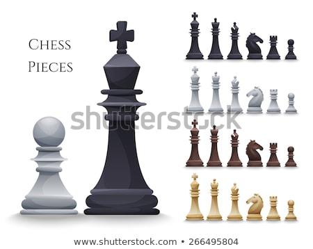 Grande blanco piezas de ajedrez establecer primer plano negocios Foto stock © mizar_21984
