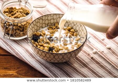 Déjeuner chocolat chaud alimentaire boire plaque Photo stock © Tagore75