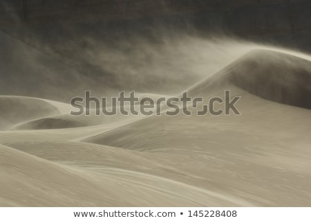 Sand blowing over sand dune Stock photo © Arrxxx