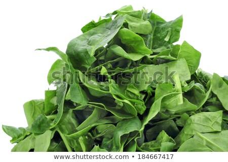 緑 · 葉 · 異なる · 農民 · 市場 - ストックフォト © nito