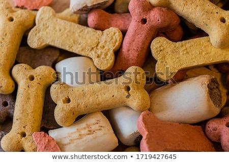kutya · keksz · csemegék · fehér · állat · fehér · háttér - stock fotó © sarahdoow