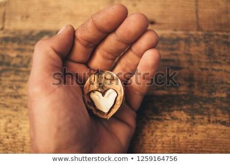 человека · трещин · молота · инструментом - Сток-фото © peter_zijlstra