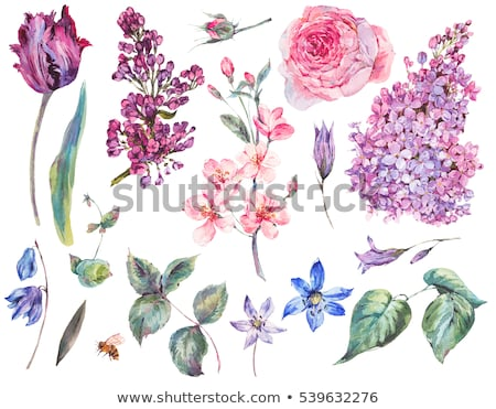 ピンク · チューリップ · ツリー · 花 · ピンクの花 - ストックフォト © rmbarricarte