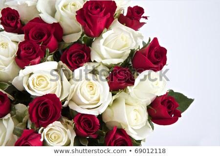 Bianco rosa rosso satinato foglio copia spazio Foto d'archivio © madelaide