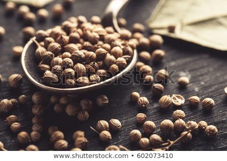Macro primo piano essiccati coriandolo sementi Foto d'archivio © ziprashantzi