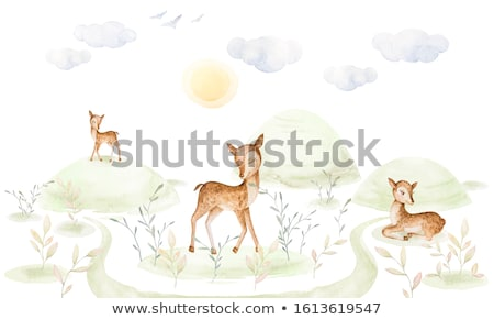 Bonitinho pequeno veado ilustração bebê floresta Foto stock © lapesnape