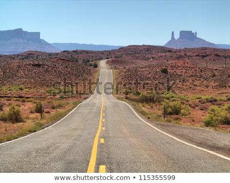 an empty american road in colorado usa stock photo © stryjek