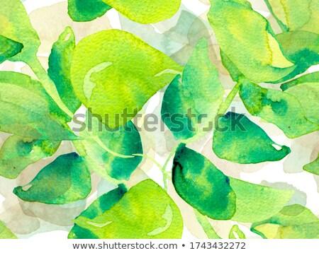 Rosy peony pattern. Stock photo © netkov1