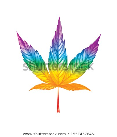 Cannabis Leaf in Rainbow Colors Stock photo © cidepix