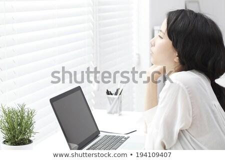 Mujer de negocios planta olla oficina negocios verde Foto stock © stevanovicigor