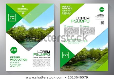 Cég prospektus sablon minta formák üzlet Stock fotó © SArts