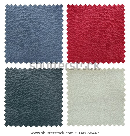 Set of blue leather samples Stock photo © homydesign