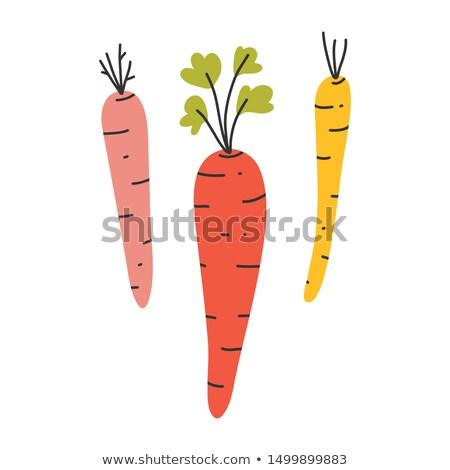art seasoning Herb; restaurant menu; cooking background Stock photo © Konstanttin