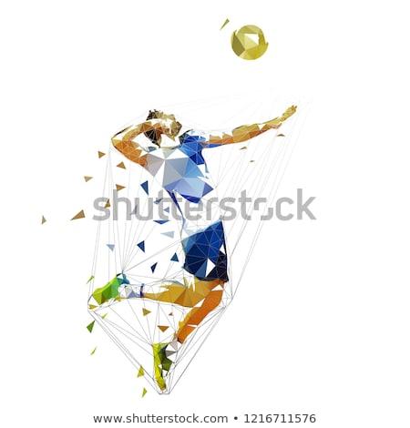 Gezonde volleybal vruchten groenten vorm speler Stockfoto © Fisher