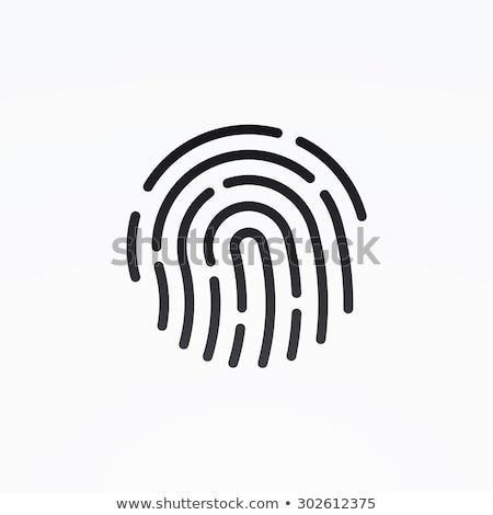Személyi igazolvány app ikon ujjlenyomat izolált modern Stock fotó © kyryloff