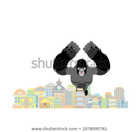 Gorilla város nagy majom város égbolt Stock fotó © popaukropa