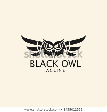 黒白 フクロウ ロゴ テンプレート 孤立した 白 ストックフォト © amanmana